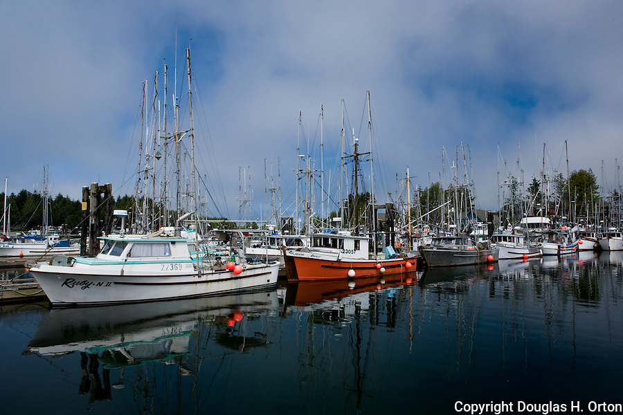 Ucluelet, British Columbia lies at the south end of Canada's Pacific Rim National Park along the north shore of Barkley Sound.  The harbor is home to commercial and sport fishing fleets and a jump off point to Kayak the Broken Island group.  Mount Frederick and Port Albion provide a backdrop.