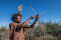 Africa, Botswana, Khwai, The Lodge, Feline Fields, edge of the Kalahari desert. Kalahari bush people, Ju'hoansi tribe. Hunter-gatherer !Kung people, part of San tribe. Although they are no longer legally allowed to hunt, the tribe shows how they use their bow and arrow and make guineau fowl traps also show how they gather different berries and herbs for eating and using as insect repellent. The elder tribesman still know how to find the large tubers (Qhgwaa) that they dig up to drink from for hydration. In the rainy season they use ostrich shells to store water. They also can still make fire by rubbing sticks together.