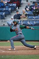 Hidekel Gonzalez (37) of the Boise Hawks bats against the Everett AquaSox at Everett Memorial Stadium on July 21, 2017 in Everett, Washington. Boise defeated Everett, 10-4. (Larry Goren/Four Seam Images)