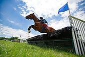3rd Temple Gwathmey Hurdle Stakes (G3) - Moscato