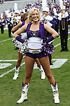 TCU Horned Frogs cheerleaders watch the action during the game between the Oklahoma Sooners and the TCU Horned Frogs  at the Amon G. Carter Stadium in Fort Worth, Texas. OU defeats TCU 24 to 17....