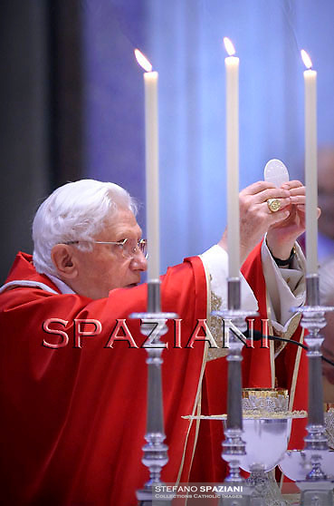 Pope Benedict XVI celebrates a mass for Cardinals who died during the year on November 4, 2010 at St Peter Basilica at The Vatican.