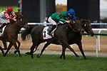 DUBAI,UNITED ARAB EMIRATES-MARCH 25: Vazirabad,ridden by Christophe Soumillon,wins the Dubai Gold Cup at Meydan Racecourse on March 25,2017 in Dubai,United Arab Emirates (Photo by Kaz Ishida/Eclipse Sportswire/Getty Images)