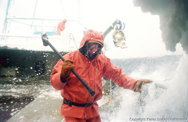 """Crewman Jeff Newton braces as a wave splashes over the side of the crab fishing vessel """"Kiska Sea"""" as it fishes for opilio crab in the Bering Sea in January and February of 1995.  Also known as freezing spray, waves and wet sea air slam into the boat freezing on impact causing ice to cover the boat.  Newton is carrying a sledgehammer which he is using to beat the ice off the sides of the boat.  Boats covered in ice become top heavy and are in danger of rolling over. The Bering Sea is known for having the worst storms in the world.  Crab fishing in the Bering Sea is considered to be one of the most dangerous jobs in the world.  This fishery is managed by the Alaska Department of Fish and Game and is a sustainable fishery.  The Discovery Channel produced a TV series called """"The Deadliest Catch"""" which popularized this fishery."""