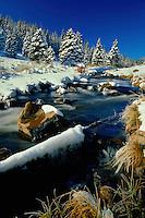 Winter morning<br /> West Fork Little Colorado River<br /> White Mountains<br /> Colorado Plateau,  Arizona