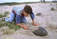 1Y47-331x  Horseshoe Crab - boy examining horseshoe crab -  Limulus polyphemus