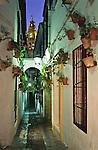 Calle de Las Flores, Cordoba (Stadt), Andalusien, Spanien
