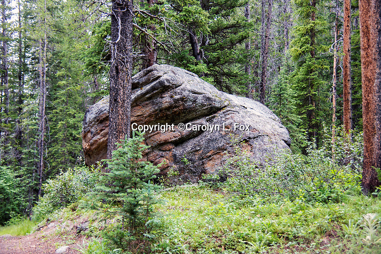 A large rock sits next to the trail.