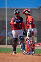 Boston Red Sox catchers Roldani Baldwin (49) and catcher Isaias Lucena (36) during a Minor League Spring Training game against the Tampa Bay Rays on March 25, 2019 at the Charlotte County Sports Complex in Port Charlotte, Florida.  (Mike Janes/Four Seam Images)