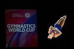 World Cup Birmingham 23.3.19 Mens Competition .Joe Fraser (GBR)
