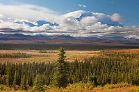 Denali's summit surrounded by clouds, Denali National Park, Alaska.