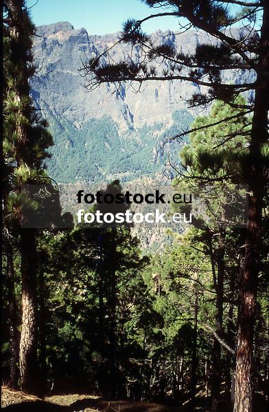 National Park Caldera de Taburiente, La Palma de Gran Canaria<br /> <br /> Parque Nacional Caldera de Taburiente, La Palma de Gran Canaria<br /> <br /> Nationalpark Caldera de Taburiente, La Palma de Gran Canaria<br /> <br /> 3812 x 2494 px<br /> Original: 35 mm slide transparency