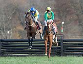 3rd Pennsylvania Hunt Cup - Ebanour