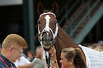 Suzzona checks in with the horse identifier before winning the Turf Amazon Handicap at  Parx Racing in Bensalem, PA, on September 5, 2011.  (Joan Fairman Kanes/Eclipsesportswire)