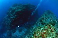 Divers exploring amidst dramatic topography of a submerged pinnacle at Narcondam Island, Andaman Islands, Andaman Sea, India