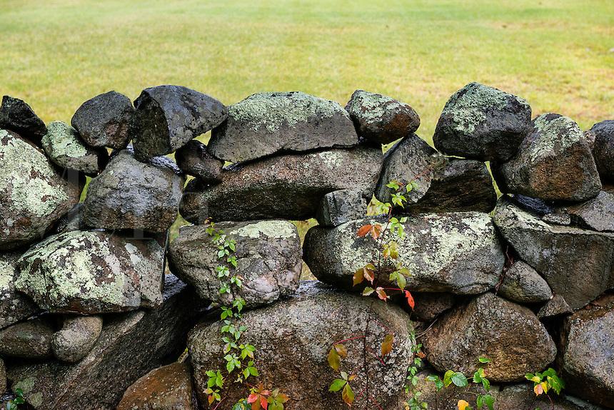 Stone fence, Martha's Vineyard, Massachusetts, USA