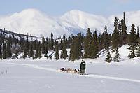 Ed Itens team mushes along trail on Puntilla Lake outside Rainy Pass Chkpt 2006 Iditarod Alaska Winter