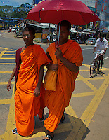 Monks on the road to Dambulla
