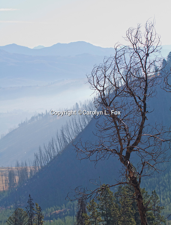 Fog covers the mountains in Lamar Valley in Yellowstone.