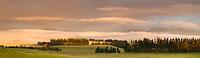 Dawn over farmland in Te Anau, Southland, New Zealand, NZ