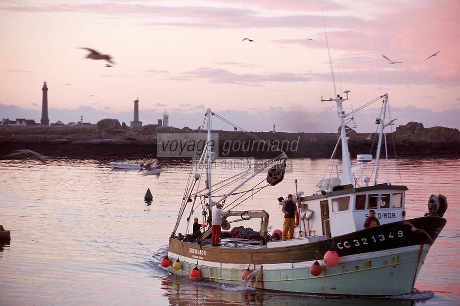 Europe/France/Bretagne/29/Finistere/Saint Guénolé: Retour des sardiniers au port à l'aube - en fond le phare d'Eckmülh (pointe de Penmarc'h)