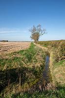 Field drain - Lincolnshire, March