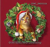 Marcello, CHRISTMAS ANIMALS, WEIHNACHTEN TIERE, NAVIDAD ANIMALES, paintings+++++,ITMCXM2002A,#XA# ,christmas wreath ,cats,kittens