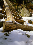 Trail ladder on Boott Spur Trail in the White Mountains of New Hampshire USA.