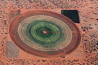Kreisrundes Feld in der Wüste Kalahari: NAMIBIA, AFRIKA, 10.12.2018: Kreisrundes Feld in der Wüste Kalahari