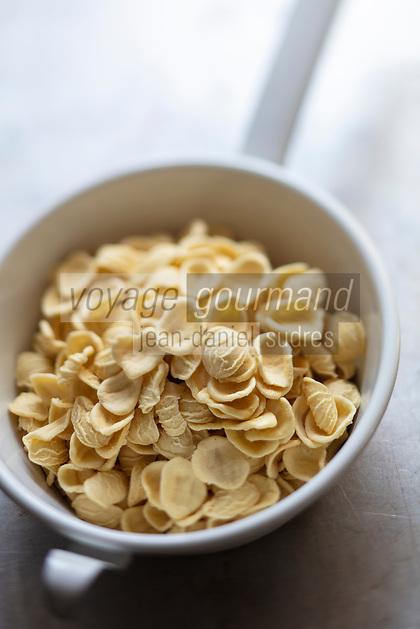 Gastronomie générale : Orecchiette pates laimentaire , cuisine italienne //  General gastronomy: Orecchiette pasta, Italian cuisine!