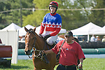 25 Apr 2009: Eagle Beagle and Paddy Young after winning the Blue Ridge Maiden Claiming Hurdle at the Foxfield Races in Charlottesville, Virginia. Eagle Beagle is owned by Barracuda Stables and trained by Ricky Hendriks.