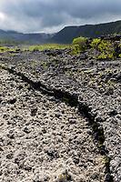 France, île de la Réunion, Sainte-Rose, Le Grand Brulé, paysage naturel de coulées de lave  //  France, Reunion island (French overseas department), Sainte Rose, Le grand Brule, natural landscape of lava flows