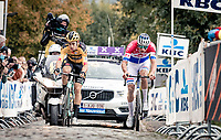 Wout van Aert (BEL/Jumbo - Visma) & Mathieu Van der Poel (NED/Alpecin-Fenix) fighting for the win<br /> <br /> 104th Ronde van Vlaanderen 2020 (1.UWT)<br /> 1 day race from Antwerpen to Oudenaarde (BEL/243km) <br /> <br /> ©kramon