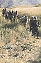 Iraq 1983 <br /> Peshmergas on their way to Haj Omran reaching the front line deserted by the Iraqi army    <br /> Irak1983 <br /> Peshmergas arrivant a Haj Omran, traversant un champ mine par l'armee irakienne