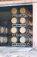 A barrel aging building with wooden barriques stacked high with aging wine. Bodega Pisano Winery, Progreso, Uruguay, South America