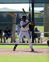 Luis Mieses - 2019 AIL White Sox (Bill Mitchell)