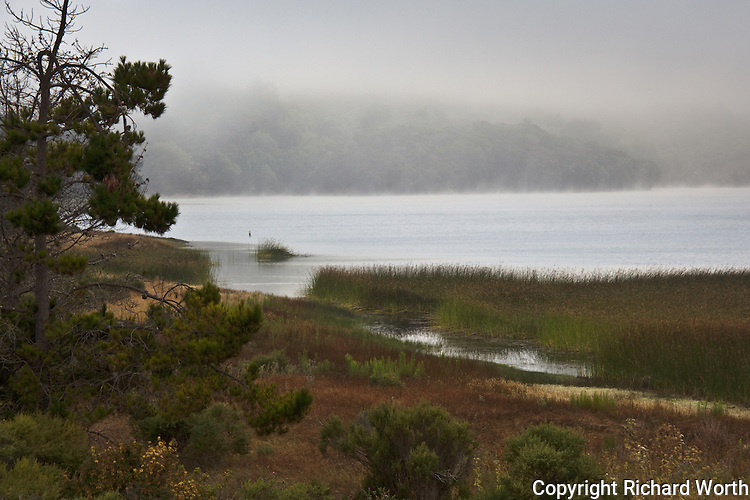 Morning fog hovers over Lower Crystal Springs Reservoir and shrouds the Santa Cruz Mountains.