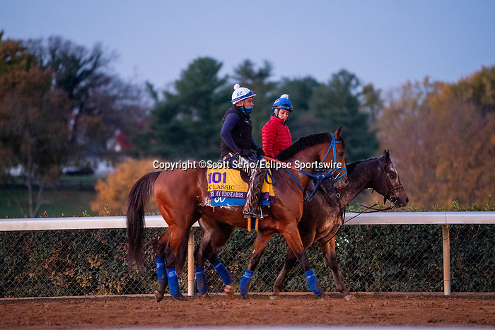 November 5, 2020: By My Standards, trained by trainer W. Bret Calhoun, walks on the track during morning workouts at Keeneland Racetrack in Lexington, Kentucky on November 5, 2020. Scott Serio/Eclipse Sportswire/Breeders Cup/CSM