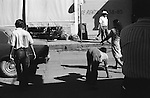 "Quadrupedal adult man hand walking Mazatlan Mexico 1973. Also known as Unertan or Uner Tan syndrome. Dr Nick Humphrey the leading authority on Quadrupedal humans says these photographs are the ""...earliest record I know of."""