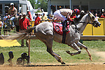 Il Villano & Jose Flores wins the $100,000 Chick Land Stakes for 3-year olds going 6 furlongs on the main track at Pimlico. Trainer Susan L. Crowell.  Owners Chuck Russo.