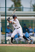 Pittsburgh Pirates catcher Brent Gibbs (66) at bat during an Instructional League game against the Tampa Bay Rays on October 3, 2017 at Pirate City in Bradenton, Florida.  (Mike Janes/Four Seam Images)