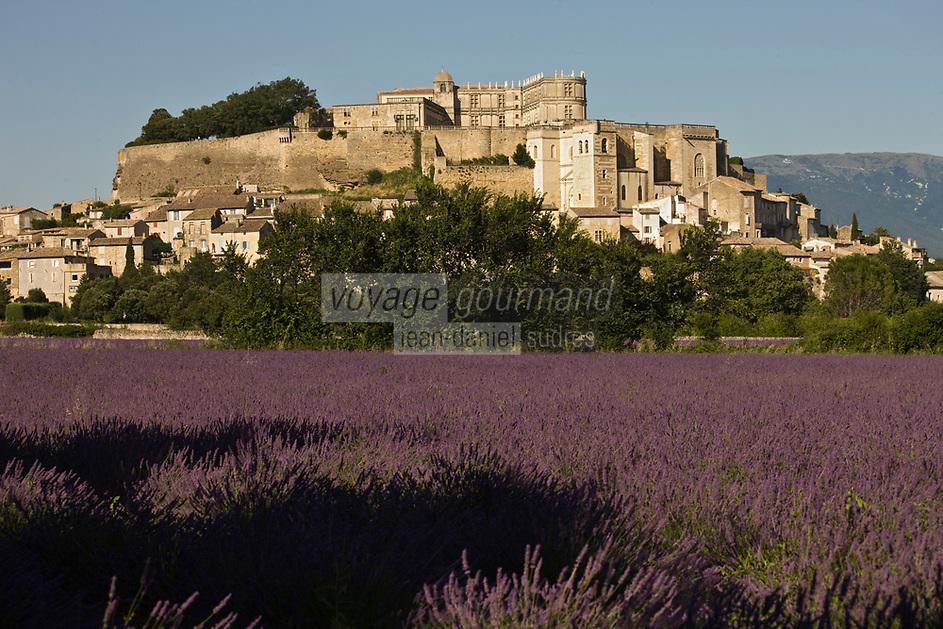 Europe/France/Rhône-Alpes/26/Drôme/Grignan: Champ de lavande, le village et le château