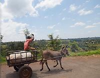 Roadside sights near Kikuyu, Kenya