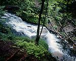 Wagner Falls. Alger County, Michigan, June, 1989
