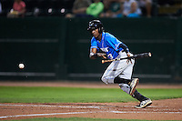 Hudson Valley Renegades second baseman Joseph Astacio (13) lays down a bunt during a game against the Vermont Lake Monsters on September 3, 2015 at Centennial Field in Burlington, Vermont.  Vermont defeated Hudson Valley 4-1.  (Mike Janes/Four Seam Images)