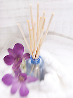 Natural Bamboo Air Freshner&#xA;&#xA;<br />