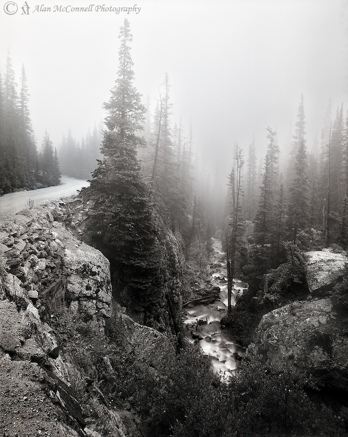 Canyon along the Old Fall River Road in Rocky Mountain National Park.