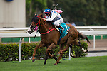 SHA TIN,HONG KONG-MAY 07: Contentment #3,ridden by Brett Prebble,wins the Champions Mile at Sha Tin Racecourse on May 7,2017 in Sha Tin,New Territories,Hong Kong (Photo by Kaz Ishida/Eclipse Sportswire/Getty Images)