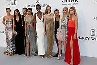 IRINA SHAYK BIANCA BALTI PIERRE EMMANUEL ANGELOGLOU NEELAM GILL MARIA BORGES ALEXINA GRAHAM OLIVIER ROUSTEING LARA STONE DOUTZEN KROES<br /> amfAR Gala Cannes 2017 - Arrivals<br /> CAP D'ANTIBES, FRANCE - MAY 25 arrives at the amfAR Gala Cannes 2017 at Hotel du Cap-Eden-Roc on May 25, 2017 in Cap d'Antibes, France