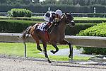 Starship Truffles with jockey Edgard J. Zayas on board wins the Princess Rooney Handicap G1.  Miami Gardens, FL 07-06-13